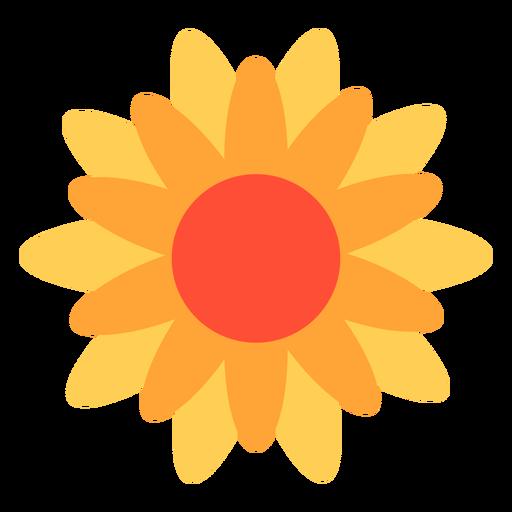 Calendula flower flat Transparent PNG