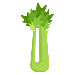 Celery vegetable flat