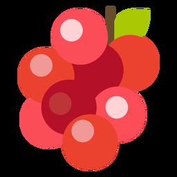 Fruta de arándanos planos