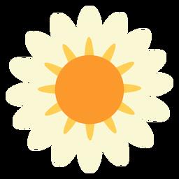Margarita flor plana