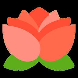 Flor de lótus plana