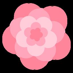 Große Blütenblätter der rosa Blume flach
