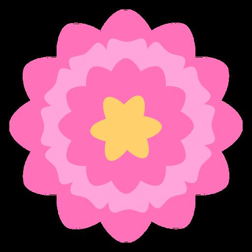 Pink flower thick petals flat