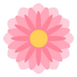 Flor rosa pétalos finos planos