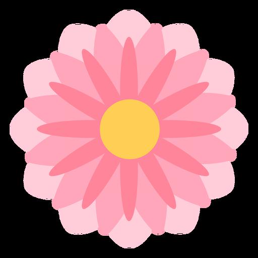 Flor rosa pétalos delgados planos Transparent PNG