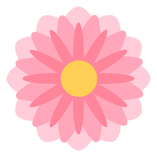 Pink flower thin petals flat Transparent PNG