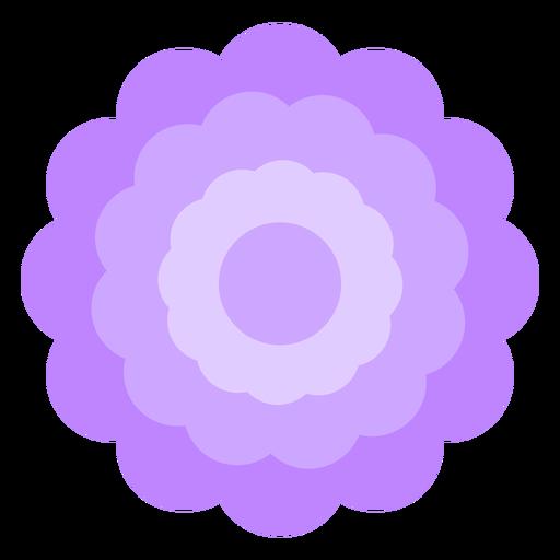 Purple flower thick petals flat