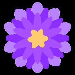 Púrpura flor delgada pétalos planos