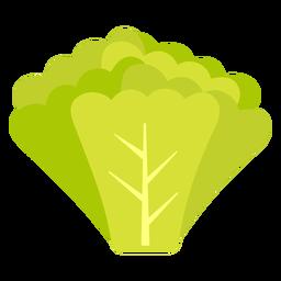 Rábanos verdes vegetales planos