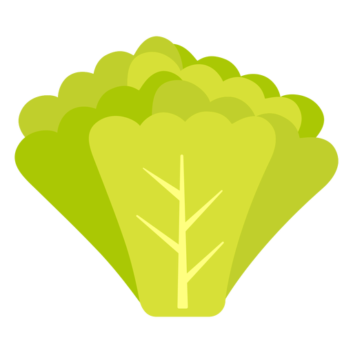 Radish greens vegetable flat Transparent PNG