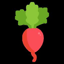 Rábano vegetal plano