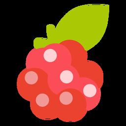 Fruta de frambuesa plana