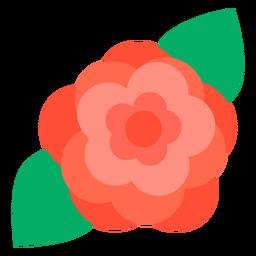 Rosenblüte flach