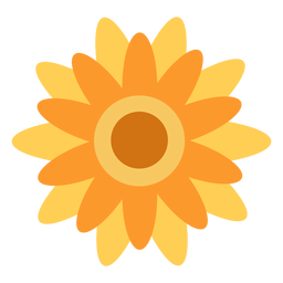 Sunflower flat