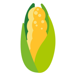 Plano vegetal de maíz dulce