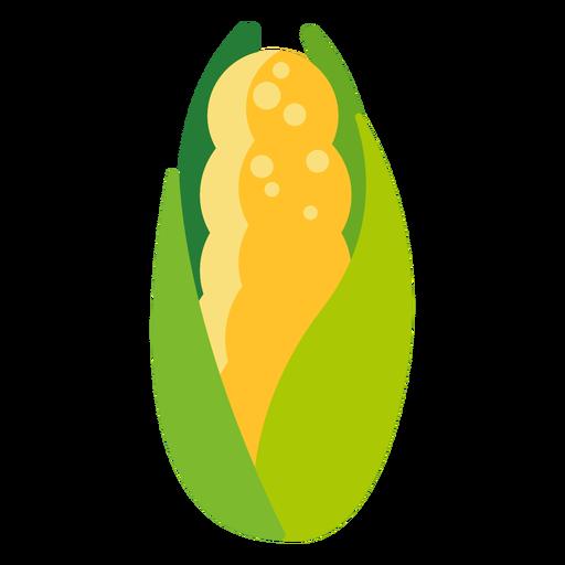 Sweet corn vegetable flat Transparent PNG