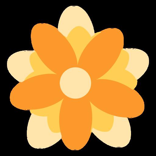 Yellow flower elliptical petals flat