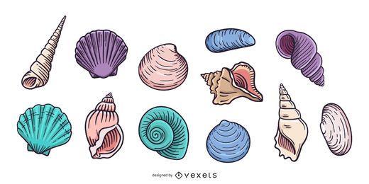 Coleção de conchas de mão desenhada