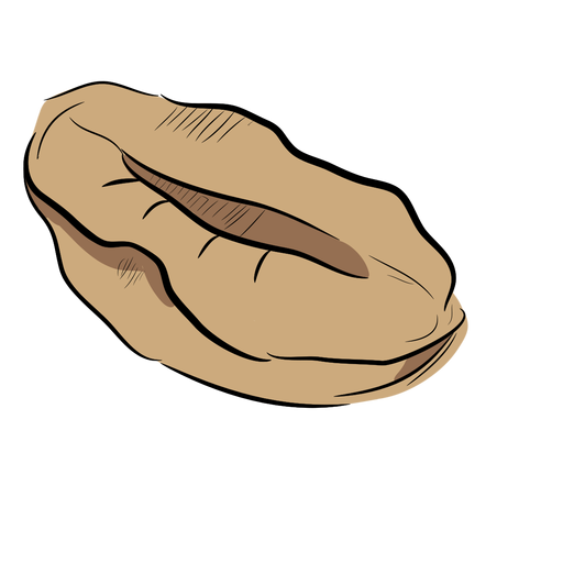 Dibujado a mano café en grano Transparent PNG