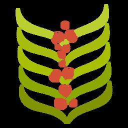 Coffee aroma plant