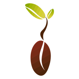 Grano de café con hojas