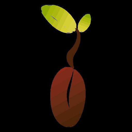 Grano de café con hojas Transparent PNG