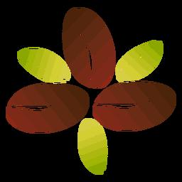 Flor de grãos de café