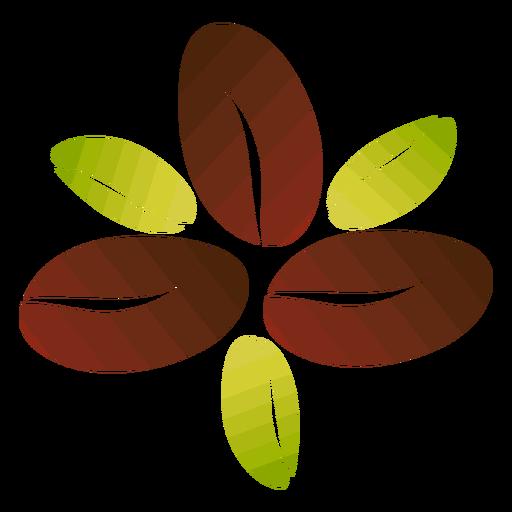 Flor de granos de café Transparent PNG