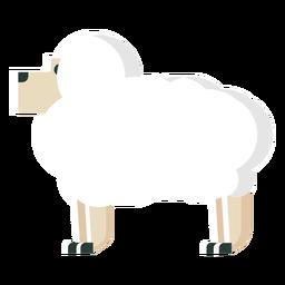 Cute sheep flat