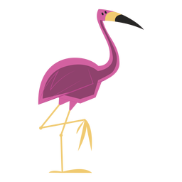 Flamingo standing one leg