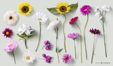 Elementos florales de PSD para maquetas