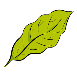 Green leaf side view