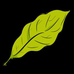 Vista lateral de folha verde