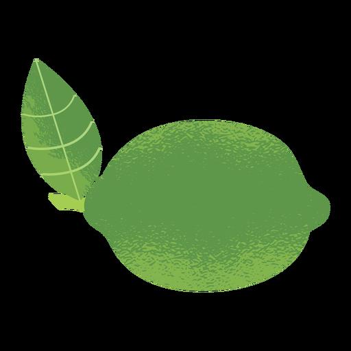 Lemon illustration texture Transparent PNG