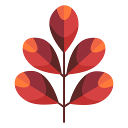 Papercut de folhas oblongas