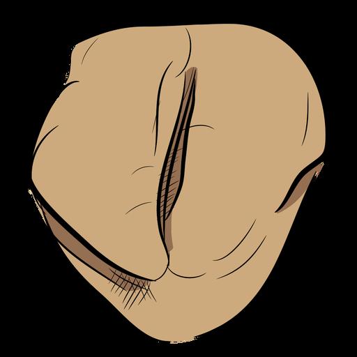 Vista superior del grano de café Transparent PNG