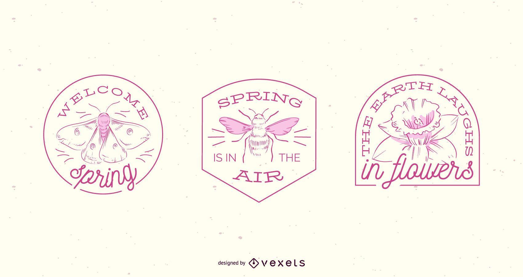 Conjunto de placa de primavera