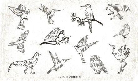 Colección de ilustraciones de aves estilo trazo