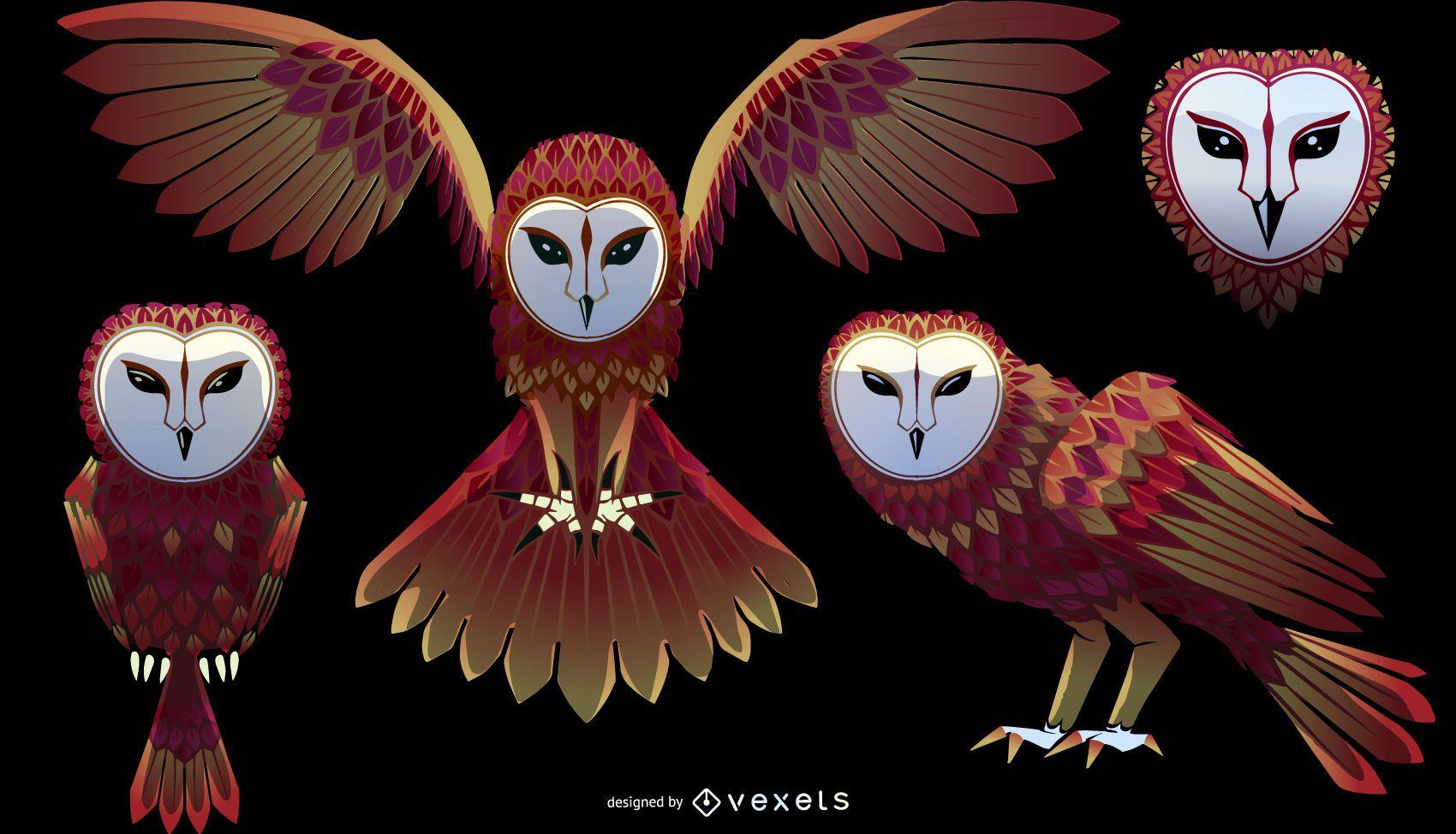 Conjunto de ilustración de lechuza común