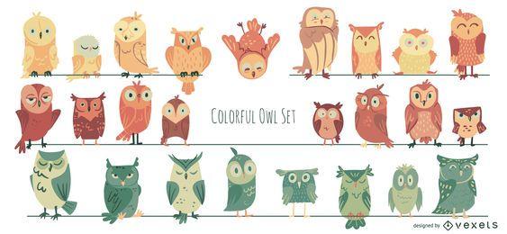 Colección colorida de ilustraciones de búhos