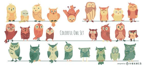 Colorful Owl Illustration Collection