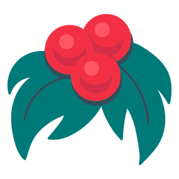 Christmas mistletoe icon christmas