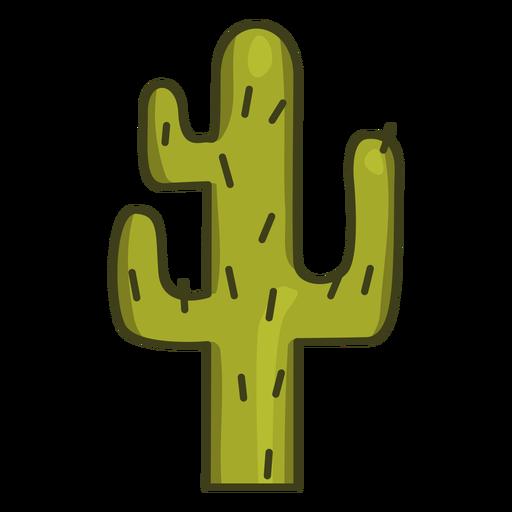 Cactus plant colorful icon stroke