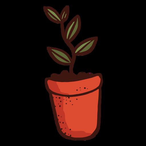 Flowerpot plant leaf illustration Transparent PNG