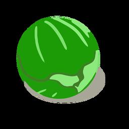 Repollo verde isométrico
