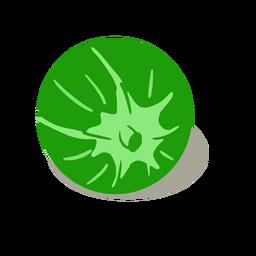 Isométrica de tomate verde vegetal