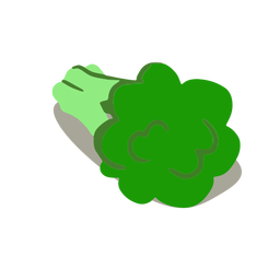 Healthy green broccoli isometric