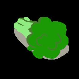 Isométrica de brócoli verde saludable