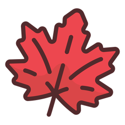 Maple leaf icon stroke