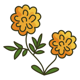 Trazo de icono colorido caléndula mexicana